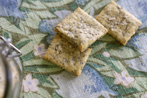 Sea Salt and Poppy Seed Crackers