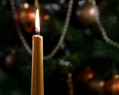 Christmas Candlelight (dibytes) Tags: christmas december candle collingwood christmastree flame 365 dailyshoot 365photos 3652009 2009365