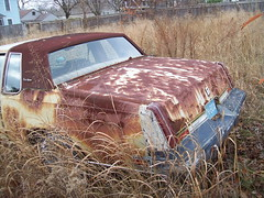 Cutlass Update 3 (BACKYard Woods Explorer) Tags: abandoned weeds rust decay oldsmobile abandonedcars cutlasssupreme