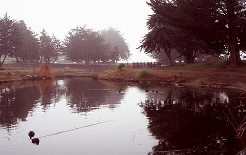 Misty Sunday Morning