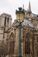 Notre Dame de Paris (Scrumptious Venus) Tags: travel paris france church architecture cathedral notredame notredamedeparis ourladyofparis lespritsudmagazine