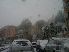Frosinone, viale Napoli nella bufera