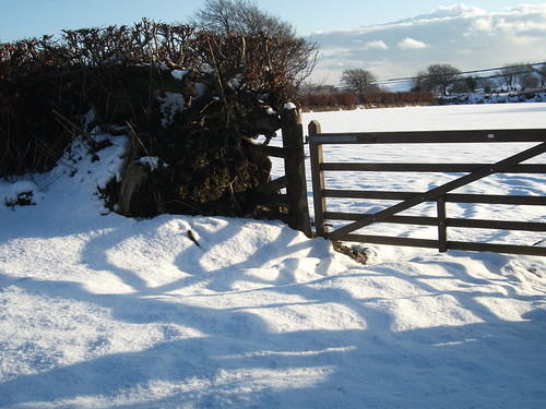 Exmoor snow 3