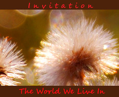 Invitation ~ The World We Live In