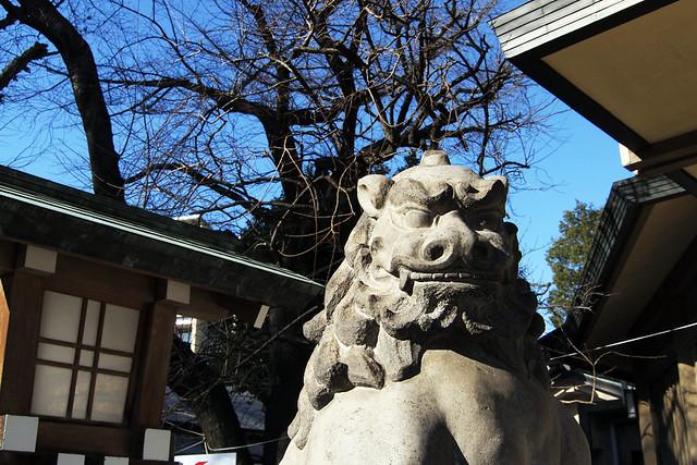 110108_133005_東郷神社
