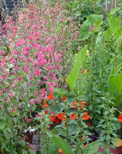 Le Jardin De Hoax