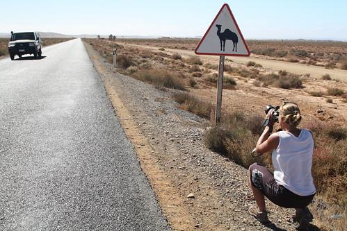 södra Marocko 017