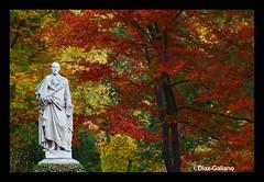 """ABRIGADO PARA EL OTOÑO (DIAZ-GALIANO) Tags: madrid autumn españa canon spain jardin amarillo botanico otoño 1001nights estatua 70200 30d rojos ocres coth flickraward"""" diazgaliano"""