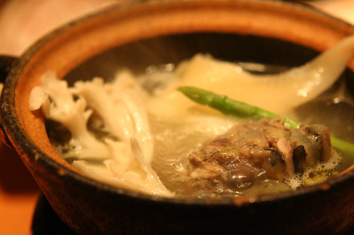 soup of chinese turtle & shark fin
