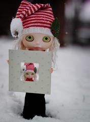 Winter Self Portrait - 154/365 ADAD