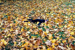 Natureboy Sniffing The Leaves Or Dead (photosur) Tags: autumn fall nature leaves toys dummies charliemccarthy natureboy ventriloquistdummies dummiessniffingtheground