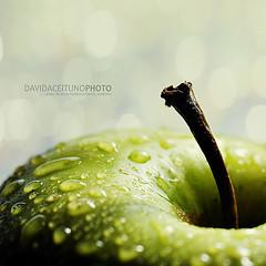 *Verde fresco... (David AceitunoPhoto) Tags: cdgexplorer