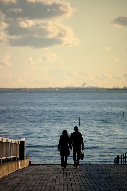 湾岸の橋上