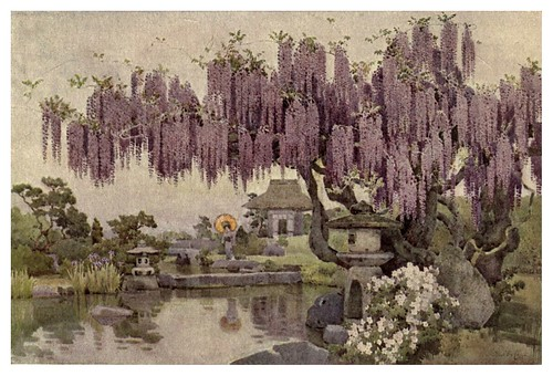 004-Una vieja Wisteria-The flowers and gardens of Japan (1908)-  Ella Du Cane
