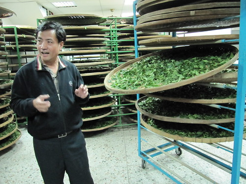 Jia Meng Teas drying