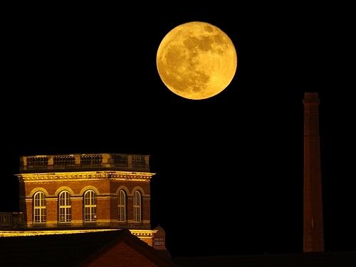 Wolf Moon / Luna del Lupo
