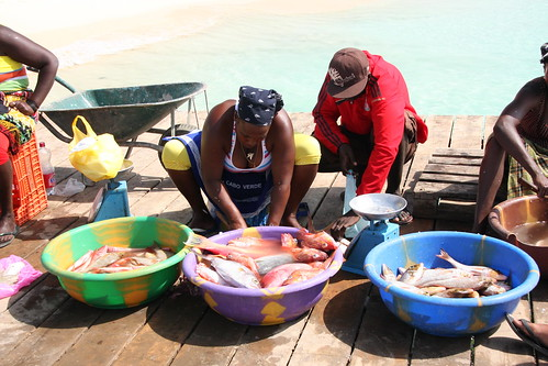 Local Cape Verde women preparing and selling fish, Santa Maria, Sal, Cape Verde by IDS.photos.