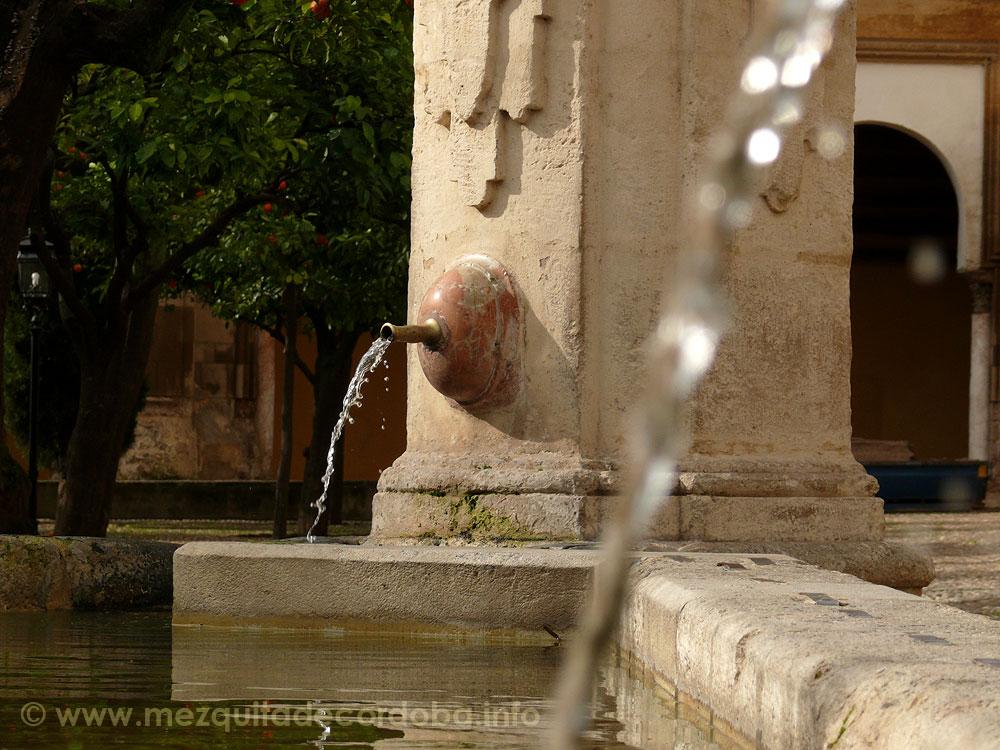 fuente-del-olivo