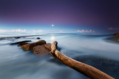 The silent sound of the moon (Dan. D.) Tags: blue sea sky cloud moon seascape tree nature water rock 30 landscape long exposition second