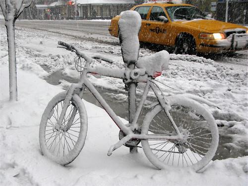 Feb 10, 2010 Snowstorm20