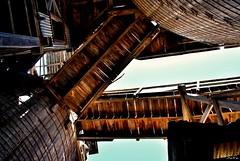 ...Vertigo... (Sonia Safa) Tags: chihuahua color luz sol mexico madera molino mina cielo solo industria molinos escalones safa plomo melancolia abandonado pasado mejico minera avalos esclaeras soniasafa