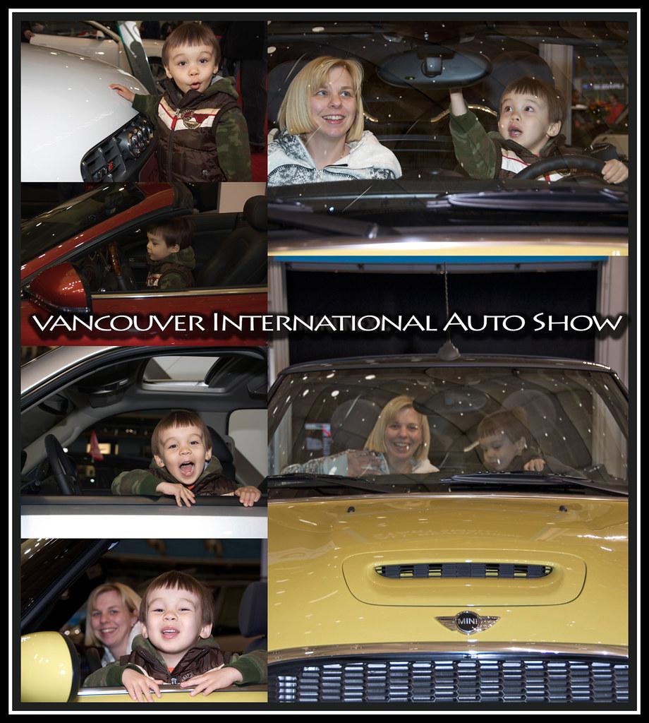auto show 2010 a