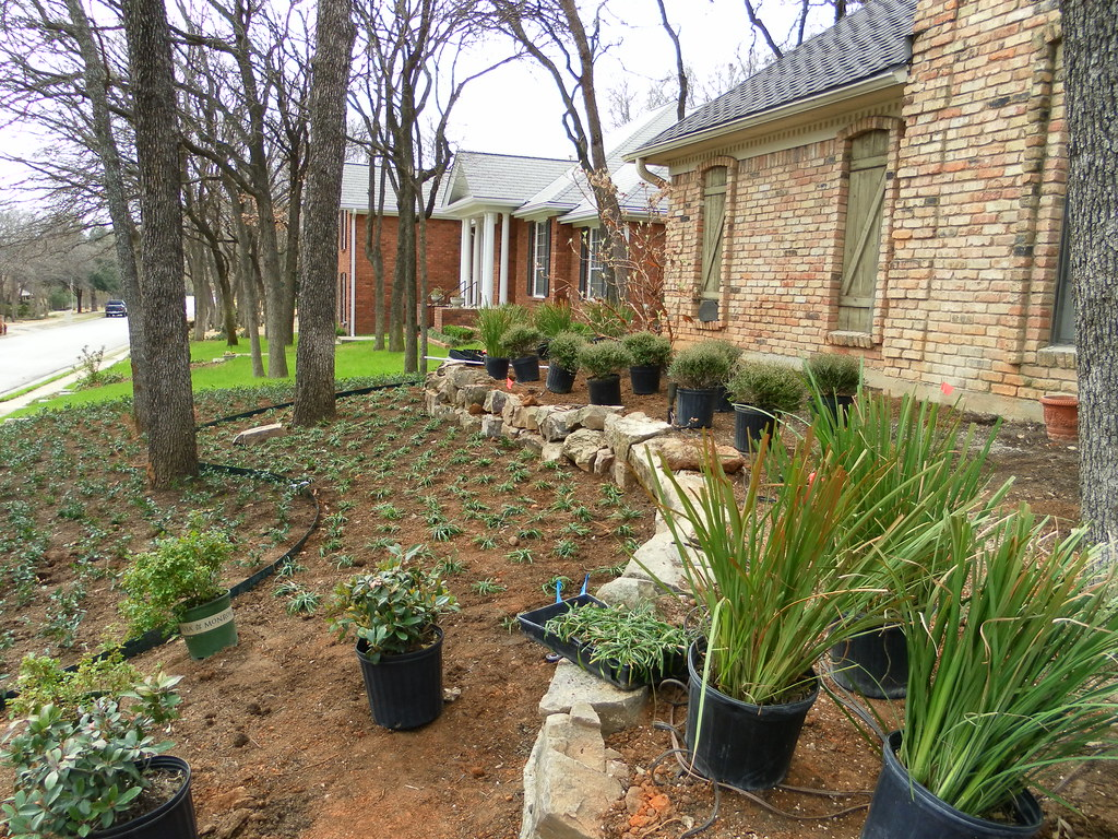 Garden Design Landscaping McKinney (Landscape Design Dallas) Tags: Plant  Flower Kitchen Pool Grass