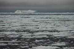 Banchisa (Puma 68) Tags: arctic acqua artico ghiaccio banchisa 78°n sigmaapo120400mmf4556dgoshsm