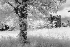 Arundel Castle (code poet) Tags: travel england sky tree castle grass clouds ir 350d westsussex unitedkingdom infrared 1022mm arundel arundelcastle