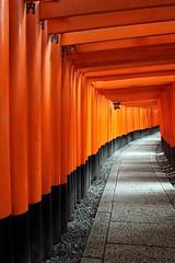 """Walkway in Orange"" - Fushimi Inari Taisha (Shrine), Kyoto, Japan (TravelsWithDan) Tags: orange japan kyoto shrine path walkway pathway torigates fushimiinaritaisha"