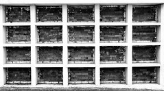(Bruno Leonardelli) Tags: bw white black brick geometrico cemetery linhas branco contrast pb preto cemitrio cemitery tijolo simetria quadrados lpides tmulos