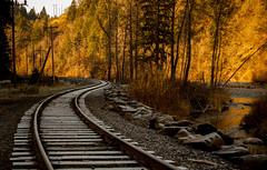 Mt. Hood Railway Photo