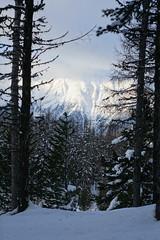 Engadin (RS_1978) Tags: schnee snow mountains alps alpes schweiz nieve sneeuw berge neve che neige alpen sn montagnes pontresina graubnden    sonycybershotdscrx10