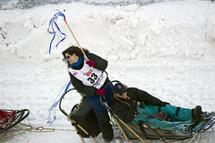 Musher Karen Hendrickson of Wasilla, Alaska heading out during the 2014 Iditarod Ceremonial Start in Anchorage. photo: Larry A. Donoso/Bower Media (Bower Media) Tags: nikon nome banquet musher sled teamwork dogsled iditarod cookinlet restart wasilla ceremonialstart iditarodsleddograce williow d3s melliniumhotel larrydonoso karenhendrickson wintersportsphotography anchorage5thavenuemall photoslarryadonosobowermediastaff larryadonoso photolarryadonosoanchorage