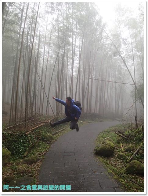 南投溪頭自然教育園區台大image113