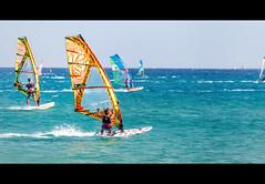 (MichaWha) Tags: rodos grèce rhodes greece michaelflocco canoneos6d 70200mmf28lusm sailboard sport sea mediterranean water windsurf windsurfing