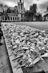 People lay flowers after the Westminster attack (MKHardyPhotography) Tags: london westminsterattack westminster mkhardyphoto