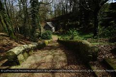 Chapelle et carière de Locuon (Azraelle29) Tags: azraelle azraelle29 sonyslta77 tamron1024 bretagne pierre
