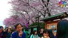 Tokyo=489 (tiokliaw) Tags: addon burtalshot colours discovery explore flickraward greatshot highquality inyoureyes japan outdoor perspective recreation supershot mywinner worldbest