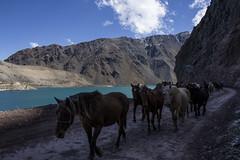 Embalse El Yeso (Liz Alfaro) Tags: embalse el yeso cordillera nieve chile maravillas caballos agua cielo san jose de maipo liz alfaro canon 60d