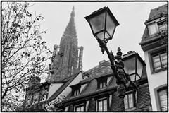 Strasbourg Cityscape (lncgriffin) Tags: strasbourg strossburi france républiquefrançaise alsace europe europa monochrom cityscape strasbourgcathedral steeple architecture lamp blackandwhite travel nikon d750 zeiss milvus distagon milvus5014zf