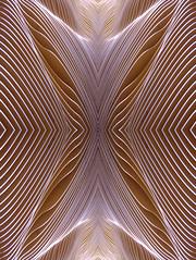 Canyon (Ed Sax) Tags: art edsax kunst photokunst photoart kunstphotographie schlucht linien kurven valley brown braun weis white canyon deepth tiefe fasllen