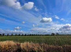 Wolkenspiel (Wunderlich, Olga) Tags: bäume blau rügen insel mecklenburgvorpommern deu natur landschaftsfoto naturfoto