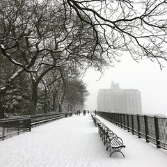 Brooklyn Heights Promenade in the Snow (Airicsson) Tags: city newyork nyc empty white snow snowstorm promenade heights brooklyn winter cold urban street camillelacroix