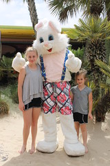Easter Bunny 024