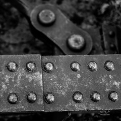 Part of the rail bridge (in explore 28-04-2017) (cdnfish) Tags: crofton croftonbc cvrd cowichanvalley cowichan vancouverisland bc britishcolumbia canada sony sonya7m2 a7m2 architecture indrustral blackandwhite bw steel rivet rivets abandoned