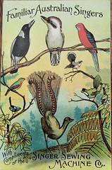 Advertising postcard for Singer Sewing Machines (Aussie~mobs) Tags: kookaburra lyrebird magpie rosella bird songbird vintage advertisement singersewingmachinecompany sydney australia stephencourt