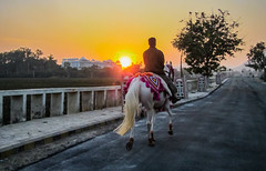 IMG_7305 (Manveer Jarosz) Tags: bkkzone bharat bharbhathamlet hindustan incredibleindia india rajasthan sevamandir talaivillage udaipur dusk horse palace people riding road rural silhouette sky sunset village