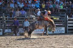 P3110201 (David W. Burrows) Tags: cowboys cowgirls horses cattle bullriding saddlebronc cowboy boots ranch florida ranching children girls boys hats clown bullfighters bullfighting