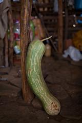 IMG_5364 (MauricioPokemon) Tags: asaregionalpiauí brasil cisternadeenxurrada cisternas craúno cáritas mauriciopokemon piauí semiárido sãojoãodaserra